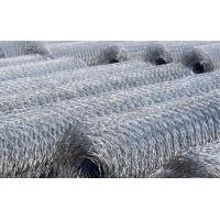 Anping Shengzhong Wire mesh Co.,LTD