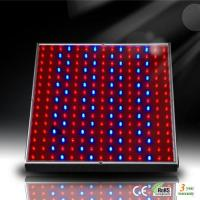 Wholesale 14W LED Aquarium Panel for Marine Fish and Coral Reef Growth from china suppliers