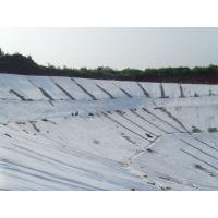 Wholesale PP non woven geotextile from china suppliers