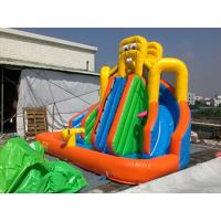 Wholesale PVC Tarpaulin Inflatable Water Slide / Inflatable Water Park Games from china suppliers