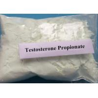 Wholesale White Weight Loss Steroids Testosterone Propionate For Bodybuilder from china suppliers