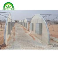 Wholesale 2019 wholesale custom retail high strength strawberry greenhouse with hydroponic foam for sale from china suppliers