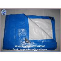 Wholesale Hot Selling 260gsm PE Tarpaulin Tarps Waterproof Cover in rain from china suppliers