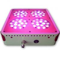 Wholesale Apollo 4 LED grow light grow light 60 * 3W greenhouse planting nursery lamp lights up from china suppliers