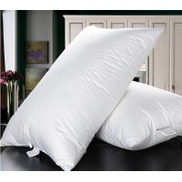 Quality Cheaper duck down feather  natual good filling white pillow insert with piping for sale