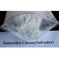 Wholesale 99% Tamoxifen Citrate Steroid Powder Nolvadex / Tamoxifen Citrate CAS 54965-24-1 from china suppliers
