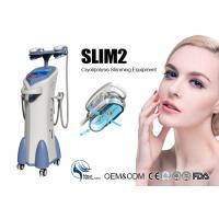 Wholesale Professional Coolsculpting Cryolipolysis Machine With 4 Handpiece , Cryolipolysis Fat Freezing Machine from china suppliers