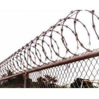 Wholesale Hospitals / Military Sites Stainless Steel Razor Wire Sun Resistant Anti Rust from china suppliers