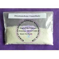 Wholesale Muscle Building Steroids Drostanolone Enanthate powder recipe effect from china suppliers
