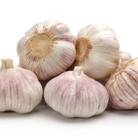 Wholesale Fresh Purple Garlic From China from china suppliers