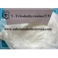 Wholesale CAS 55-06-1 Fat Loss Hormones Natural Weight Loss Powder T3 Hormones L-Triiodothyronine from china suppliers