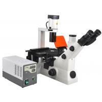 Wholesale Inverted Fluorescent Biological Microscope With Infinitive Optical System from china suppliers