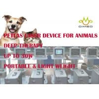 Wholesale Lightweight Veterinary Laser Equipment / Device Provide Accelerated Pain Relief And Healing from china suppliers