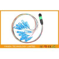 Wholesale SC Hydra 12 Strand Fiber Cable Assembly / MTP MPO Patch Cord For FTTX from china suppliers