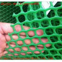 Wholesale 2016 hot sale plastic flat wire netting from china suppliers