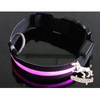 Quality Newest  LED dog collar, LED lighting for dog collar, safe and fashionable for sale