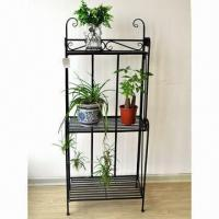 Quality Plant stand, made of iron tube and bar with powder coating for sale