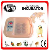 China Favorable price CE certificate automatic chicken egg incubator in sale on sale