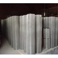 Wholesale Galvanized Welded Wire Mesh, Dutch Wire Mesh from china suppliers