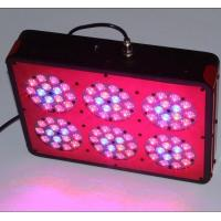 Wholesale apollo 6 hydroponics greenhouse apollo led grow lights from china suppliers