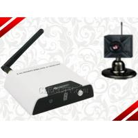 Wholesale Wireless Camera kits--Wireless Receiver + Wireless Camera CEE-WR810-7131 from china suppliers