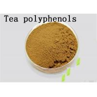 Wholesale Antioxidant Natural Green Tea Extract Tea Polyphenols Catechins EGCG Brown from china suppliers