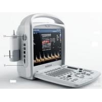 Wholesale Multi-frequency 3D / 4D Color Doppler Ultrasound System With Focused Ultrasound Transducer from china suppliers