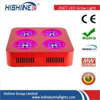 Wholesale 500w White Orange Red Blue Garden Grow Lights / Greenhouse Grow Lamps For Indoor Plants from china suppliers