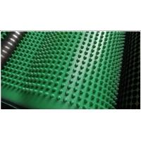 Wholesale Roof Protection Dimpled Plastic Drain Sheet , Geosynthetics In Civil Engineering from china suppliers