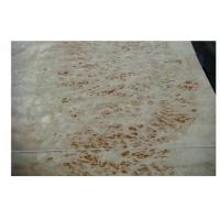 Wholesale Sliced Cut White Burl Wood Veneer Maple With N/A Grain from china suppliers