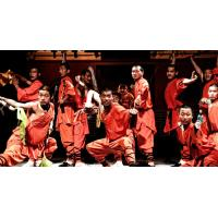 Wholesale China Kung Fu Tour Visit Shaolin Temple Tour Guiding Services from china suppliers