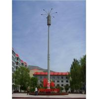Wholesale STREET LIGHT ANTENNA for telecom from china suppliers