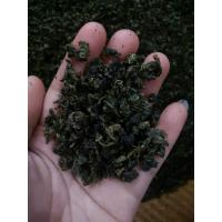 Wholesale High Grade Tieguanyin Oolong Tea , Fermented Organic Gaba Tea from china suppliers