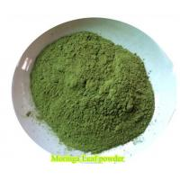Quality China NJP-1200 100% Pure Moringa Powder Capsule Filling Machine Fully Automatic for sale