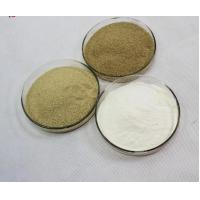 Wholesale White  Feed Grade Enzymes Preservatives Extraordinary Stable Activity from china suppliers