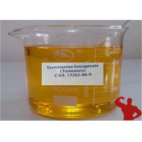 Quality Oil  Anabolic Steroid Hormones Testosterone Isocaproate For Male Bodybiulding 15262 86 9 for sale