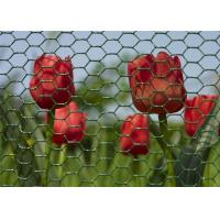 Wholesale Environmental Plastic Coated Chicken Galvanized Wire Netting For Garden from china suppliers