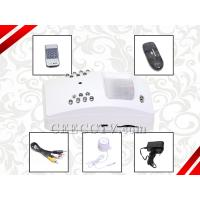 Wholesale Sony CCD Camera/Pinhole PIR Mini Alarm DVR with Motion Detection and Remote Controller CEE-MDS-6501 from china suppliers