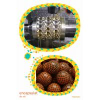 Wholesale Paintball Die Roll Soft Capsule Mold encapsulation machine phmaracetical use from china suppliers