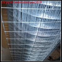 Wholesale 304 stainless steel ,28 Gauge welded wire mesh (competitive quote) from china suppliers