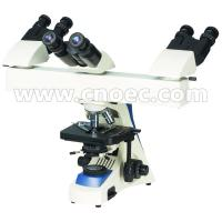 Wholesale Lab Research Dual Mult Viewing Microscope Halogen Lamp 3 Position A17.1102-A from china suppliers