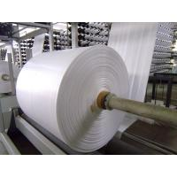 Quality Fireproof PP Polypropylene Banner Material , Woven Pp Fabric For Latex Or UV Printing for sale