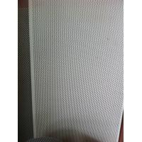 Wholesale Micro Hole Fine Wire Screen Perforated Metal Sheet For Decoration / Protection 0.1mm from china suppliers