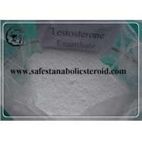 Wholesale Testosterone Steroid Hormone Powder Testosterone Enanthate For Fat Loss & Muscle Gain from china suppliers