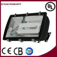 Wholesale Induction Flood Light from china suppliers