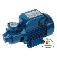 Wholesale CWX Series Marine Water Pump , Self - Priming Peripheral Vortex Pump from china suppliers