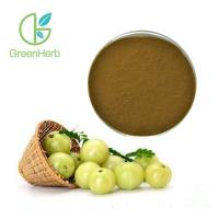 China 30% Polyphenols Phyllanthus Emblica Extract Pure Natural Amla Fruit Extract Food Medical Grade on sale