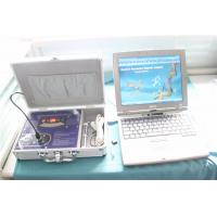 Wholesale Body Composition Quantum Body Health Analyzer AH-Q10 Software Free Download from china suppliers