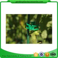 Wholesale Colorful Garden Plant Accessories Plastic Garden Plant Clips / Plant Support Clips 45*40*50 Colorful from china suppliers