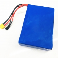 Wholesale 1000 Cycle 5200mAh 36V Lithium Ion Battery CC CV Vehicle Lithium Battery from china suppliers